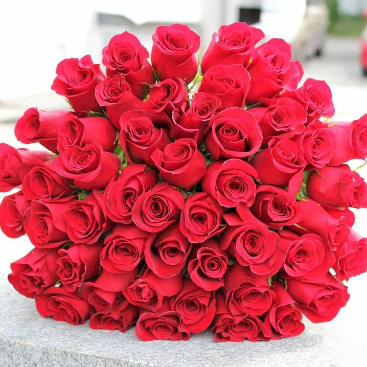 51 алая роза
